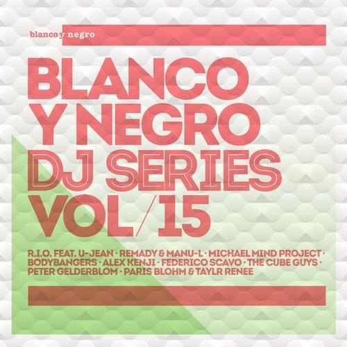 Blanco Y Negro DJ Series Vol. 15 Album Art
