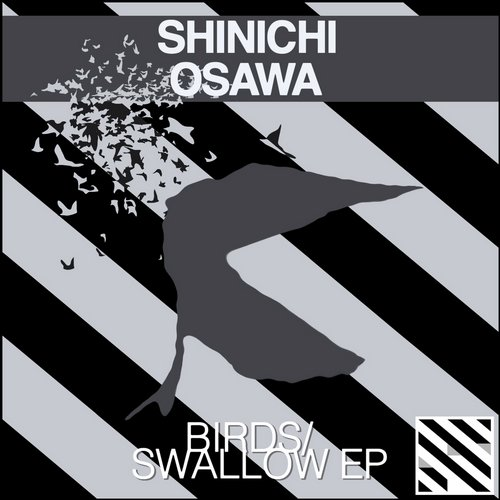 Birds/Swallow - EP Album Art
