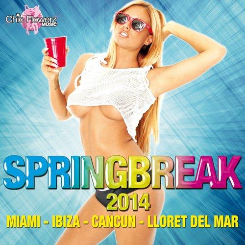 Springbreak 2014 (Miami - Ibiza - Cancun - Lloret del Mar) Album Art
