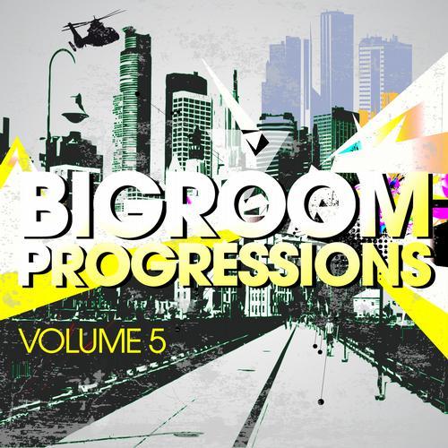 Album Art - Bigroom Progressions - Volume 5
