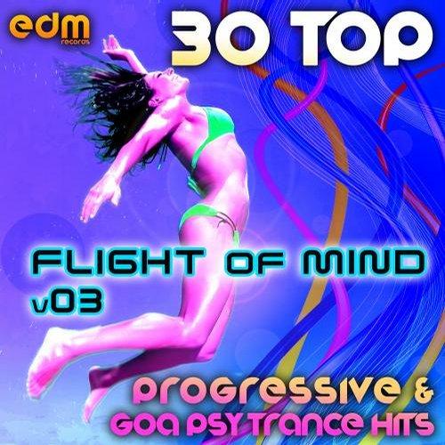 Album Art - Flight Of Mind, Vol. 3 - 30 Progressive & Goa Psy Trance Hits