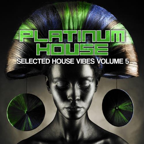 Album Art - Platinum House, Vol. 5 (Selected House Vibes)