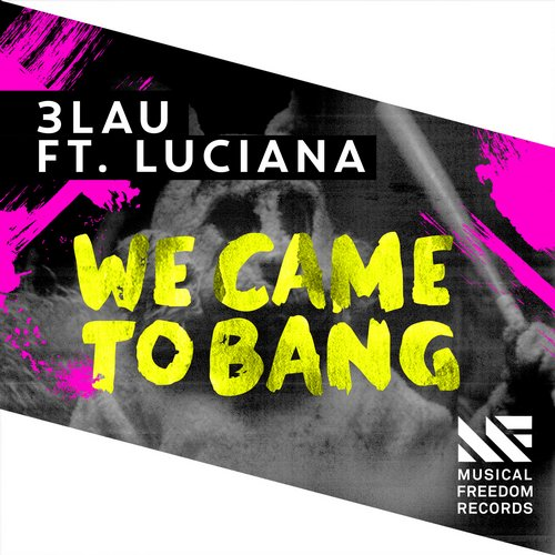 Album Art - We Came To Bang feat. Luciana