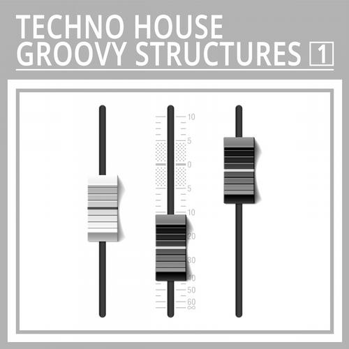 Album Art - Techno House Groovy Structures, Vol. 1