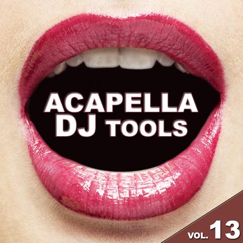Album Art - Acapella DJ Tools Vol. 13