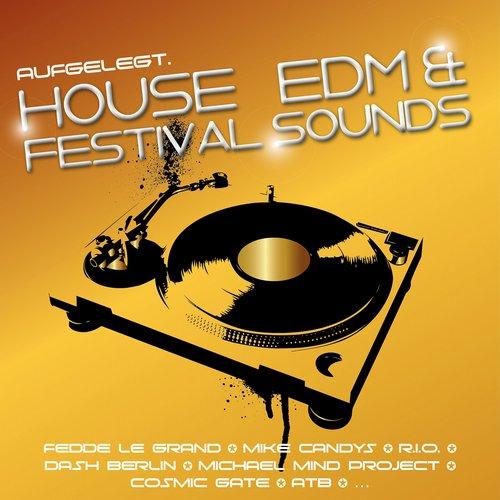 Album Art - Aufgelegt. House, EDM and Festival Sounds