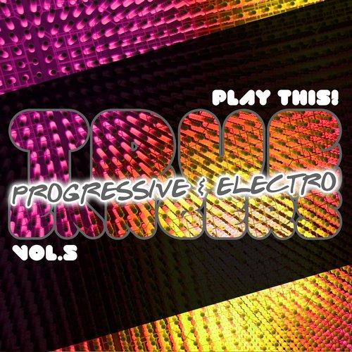 True Progressive & House Bangers, Vol. 5 Album Art