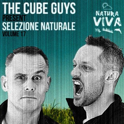 Album Art - The Cube Guys Present Selezione Naturale Volume 17
