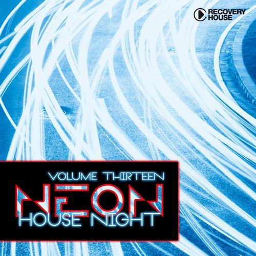 Album Art - Neon House Night Vol. 13