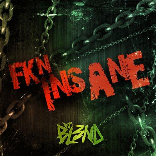 Fkn Insane Album Art