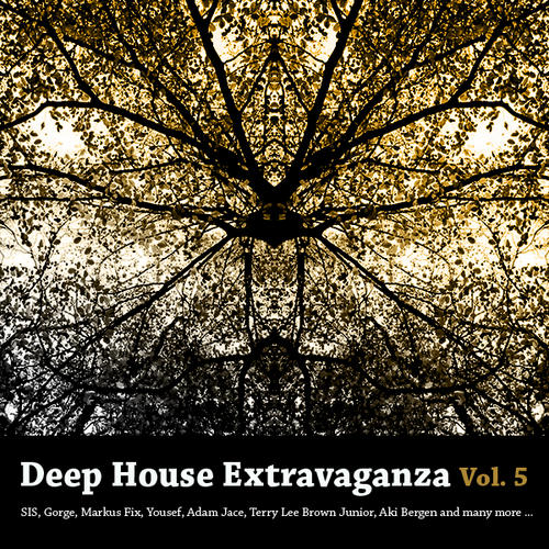 Album Art - Deep House Extravaganza Volume 5