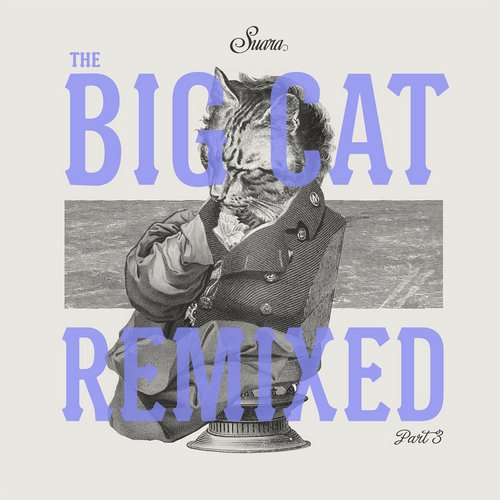 Album Art - The Big Cat Remixed Part 3
