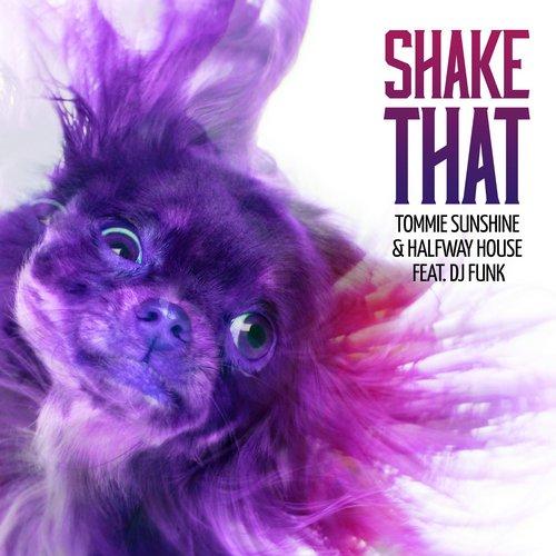 Album Art - Shake That