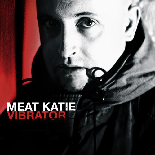 Album Art - Vibrator