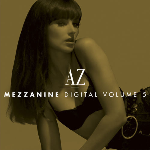 AZ Mezzanine Digital Volume 5 Album Art
