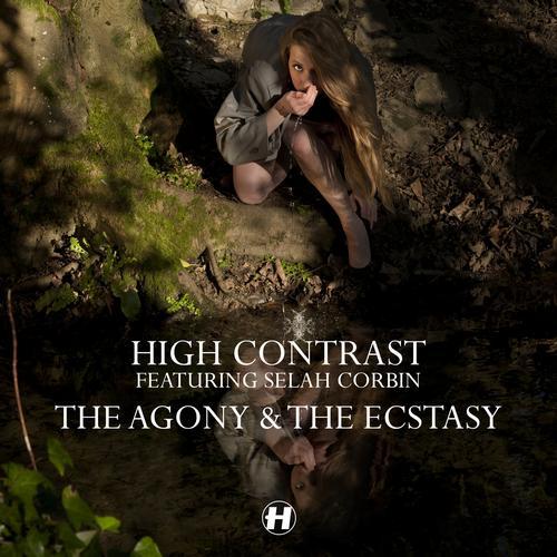 Album Art - The Agony & The Ecstasy (feat. Selah Corbin)