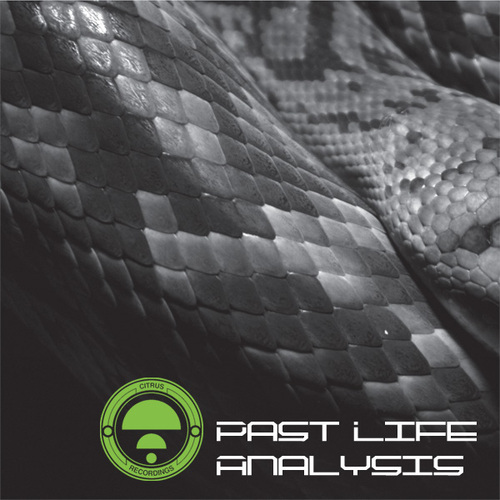 Past Life Analysis Album Art