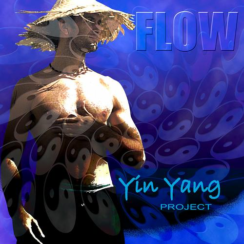 Album Art - Yin Yang Project