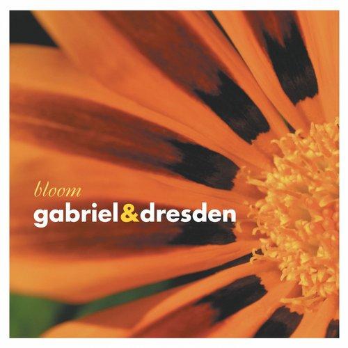 Album Art - Bloom