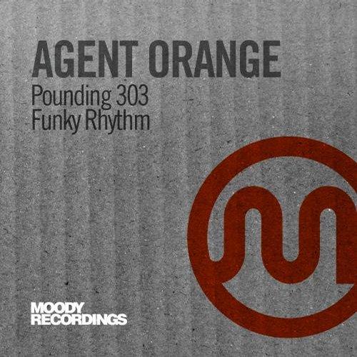 Pounding 303 / Funky Rhythm Album Art