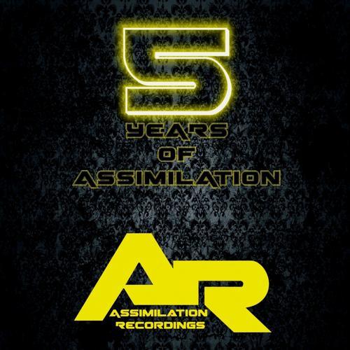 Album Art - 5 Years of Assimilation