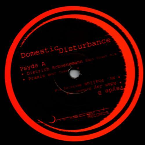 Album Art - Domestic Disturbance EP