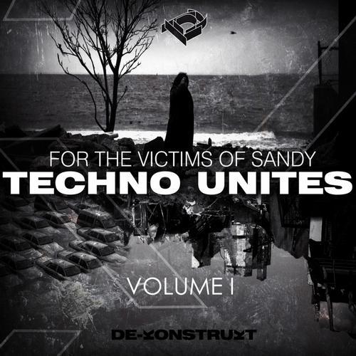 Album Art - Techno Unites 'Victims of Sandy' Volume I