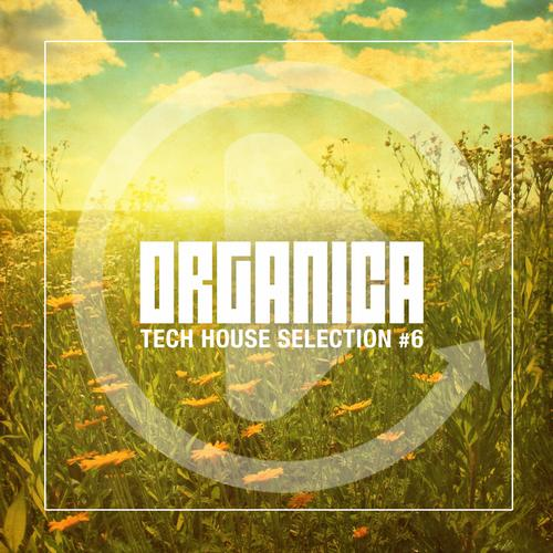 Album Art - Organica #6