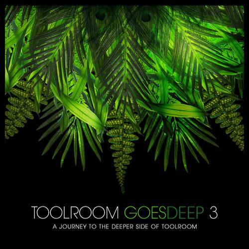Album Art - Toolroom Goes Deep 3