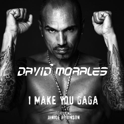 Album Art - I Make You Gaga - Remix