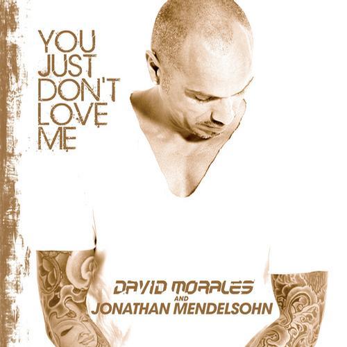 Album Art - You Just Don't Love Me