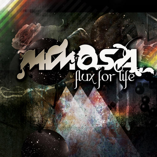 Album Art - Flux For Life