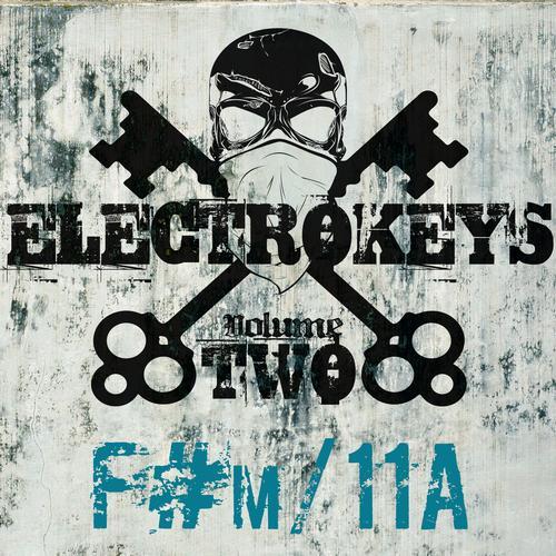 Album Art - Electro Keys F#m/11a Vol 2