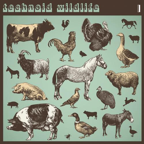 Album Art - Technoid Wildlife I