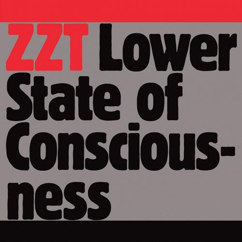 Album Art - Lower State Of Consciousness