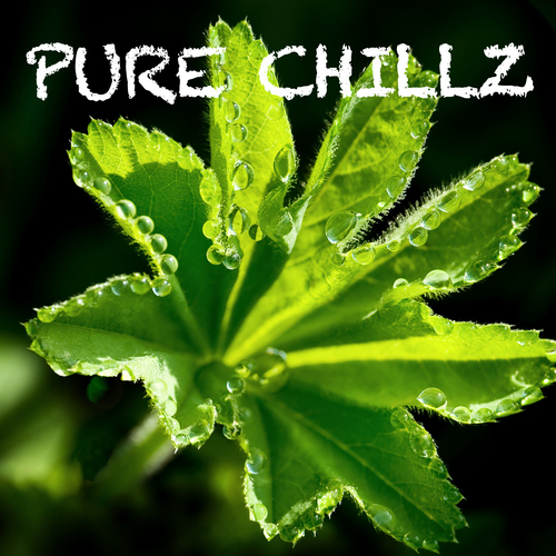 Album Art - Pure Chillz - Volume One