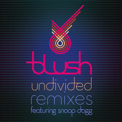 Album Art - Undivided (Remixes)