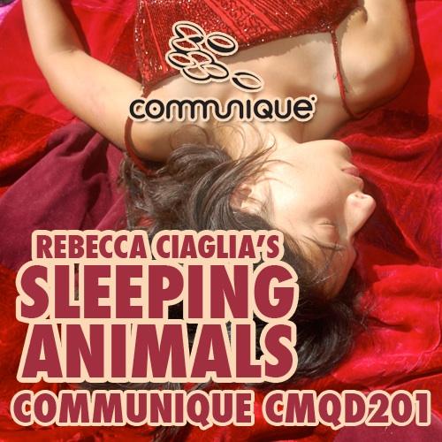 Album Art - Sleeping Animals