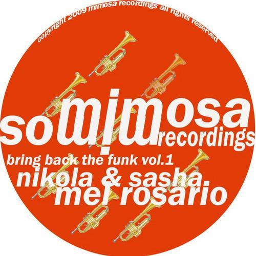 Album Art - Bring Back The Funk Vol. 1