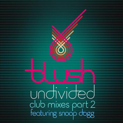 Undivided - Club Mixes Part 2 Album Art