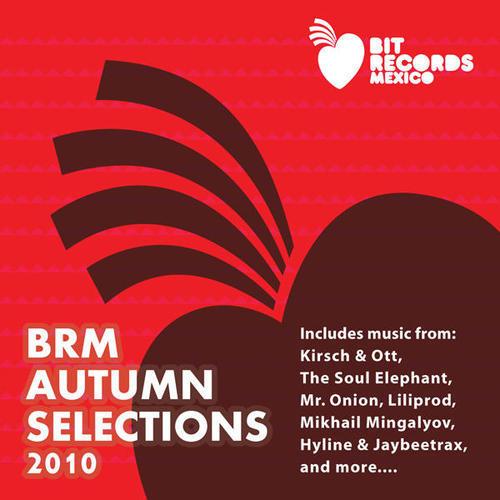 Album Art - BRM Autumn 2010