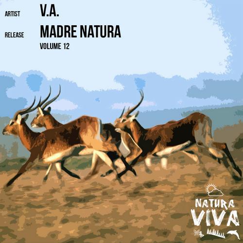 Album Art - Madre Natura Volume 12