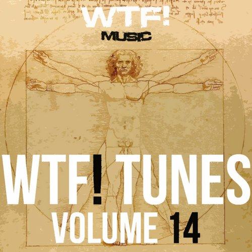 Album Art - WTF! Tunes Volume 14
