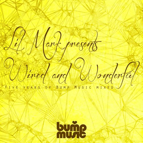 Album Art - Lil Mark Presents Wired And Wonderful 5 Years Of Bump Music
