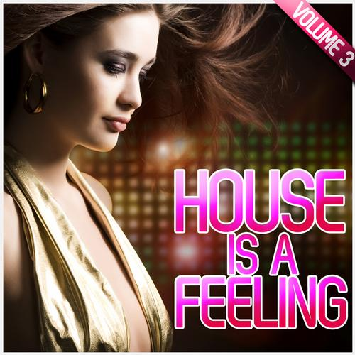 Album Art - House Is A Feeling Vol. 3