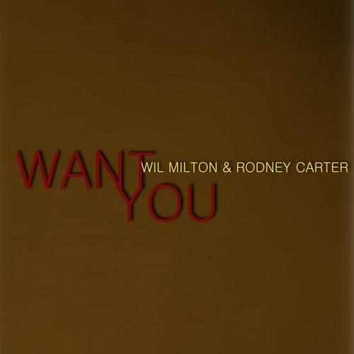 Album Art - Want You