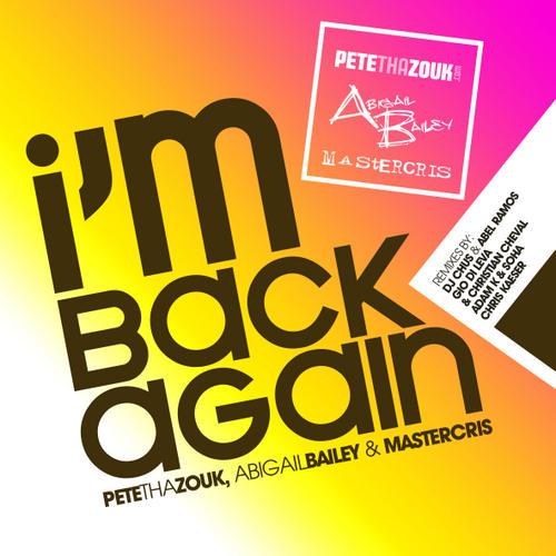 Album Art - I Am Back Again