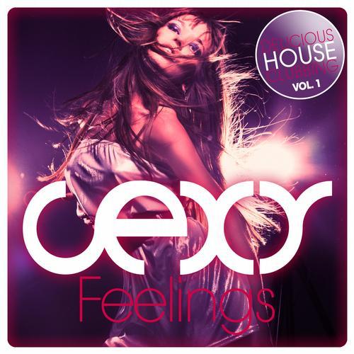 Album Art - Sexy Feelings - Delicious House Clubbing Vol. 1