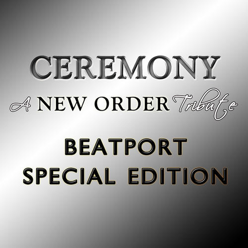Album Art - A New Order Tribute: Beatport Special Edition