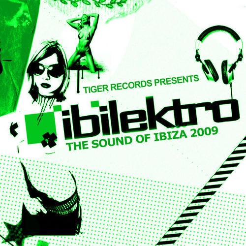 Album Art - Ibilektro 2009
